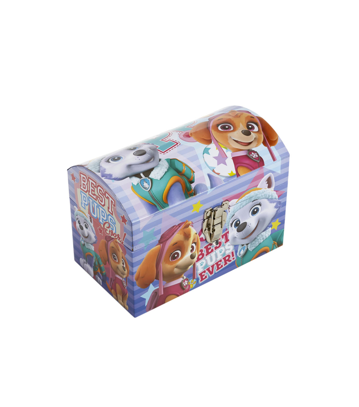 Organizing Essentials Extra Small Dome Storage Trunk-Paw Patrol
