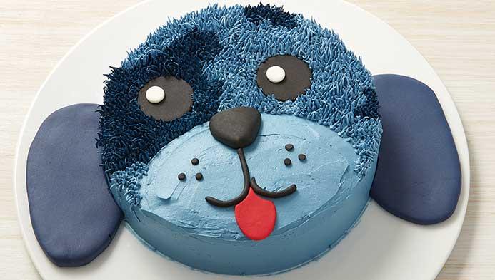 Kids Pet Pal Cake