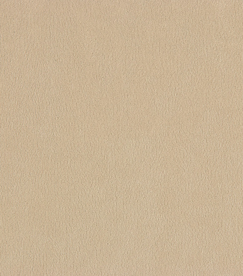 Home Decor 8\u0022x8\u0022 Fabric Swatch-Suede Champagne