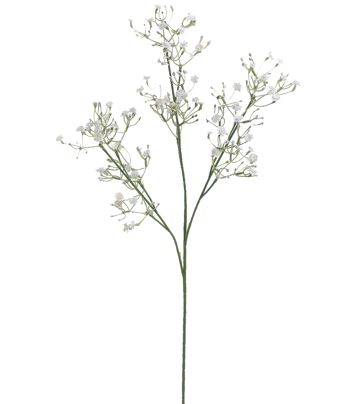 Bloom Room Pack of 12 24\u0027\u0027 Gypsophila Sprays-White