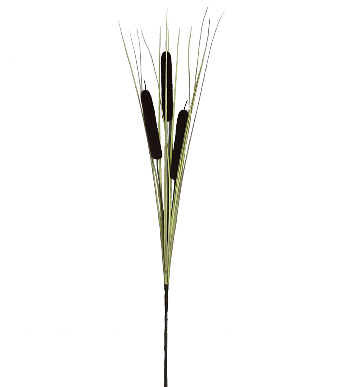 Blooming Autumn 28\u0027\u0027 Onion Grass & Cattail Spray