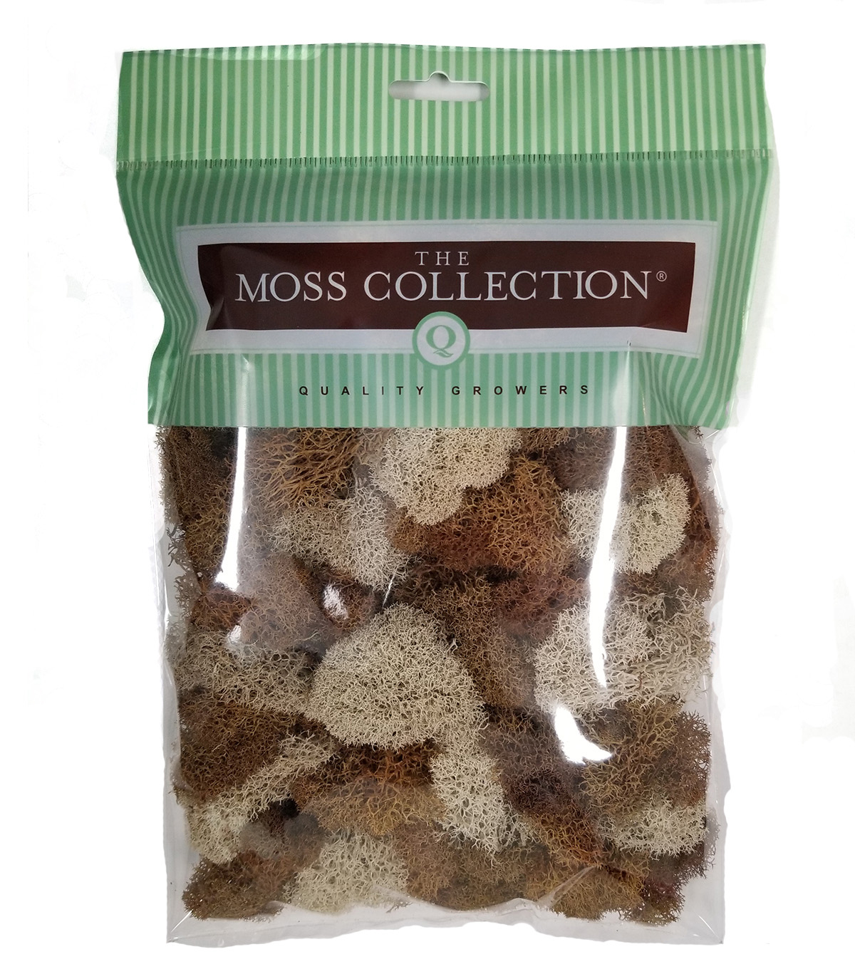 Quality Growers The Moss Collection Reindeer Moss-Natural & Walnut
