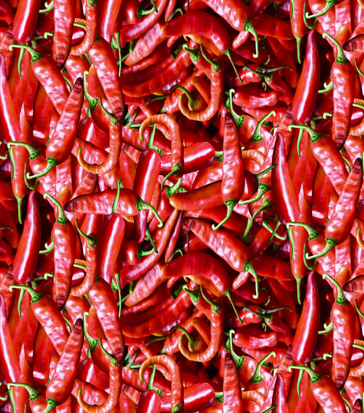 Novelty Cotton Fabric -Photoreal Red Peppers
