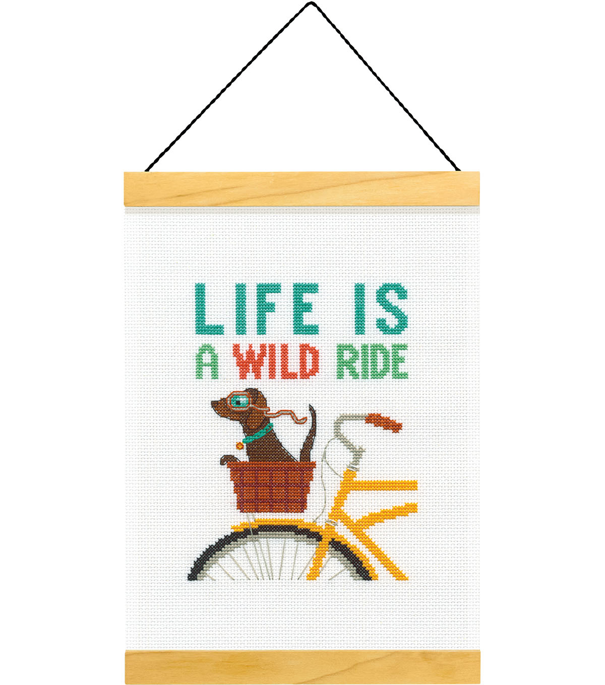 Dimensions Counted Cross Stitch Kit-Wild Ride