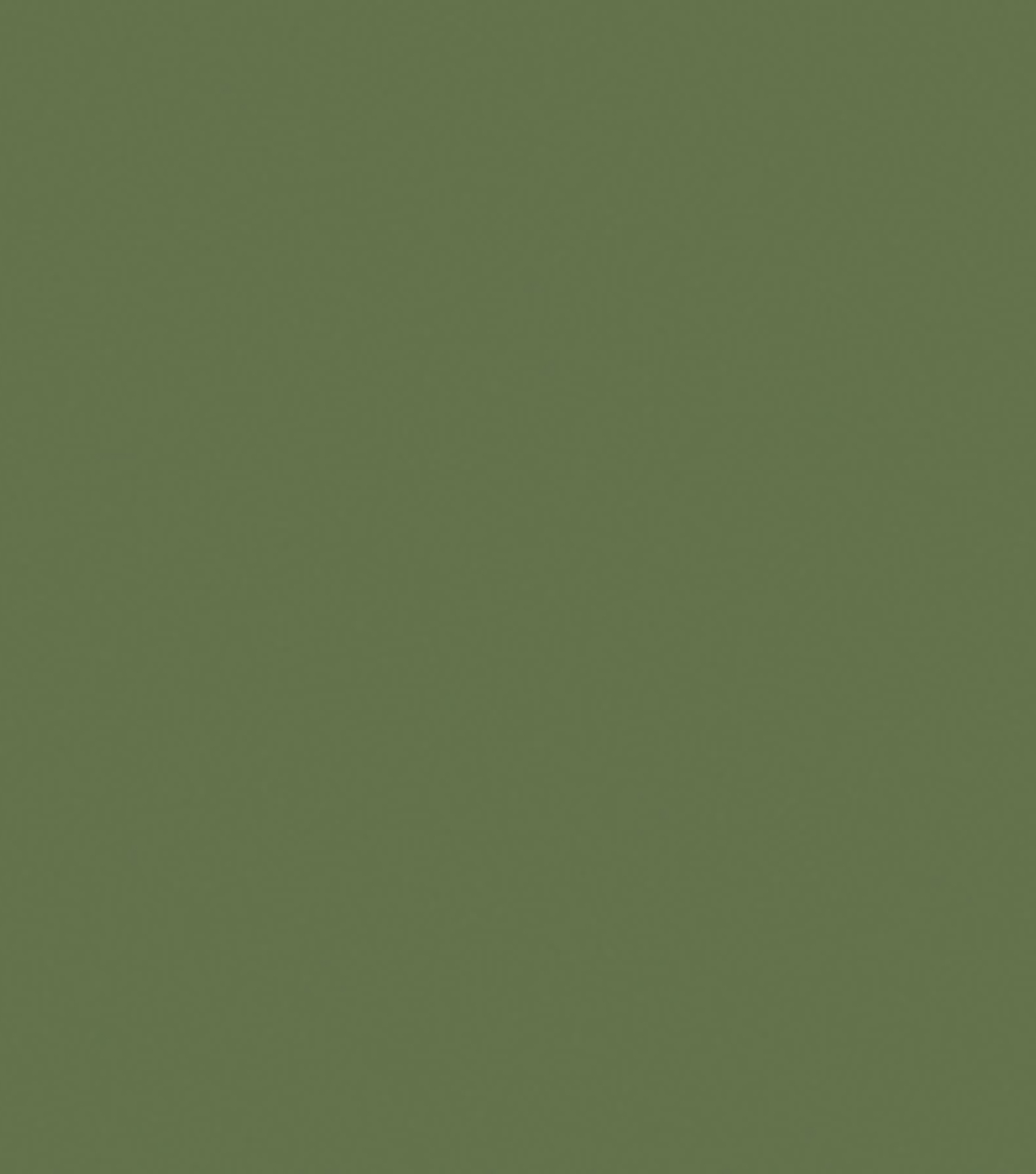 Delta Ceramcoat Acrylic Paint 2 oz, English Yew Green