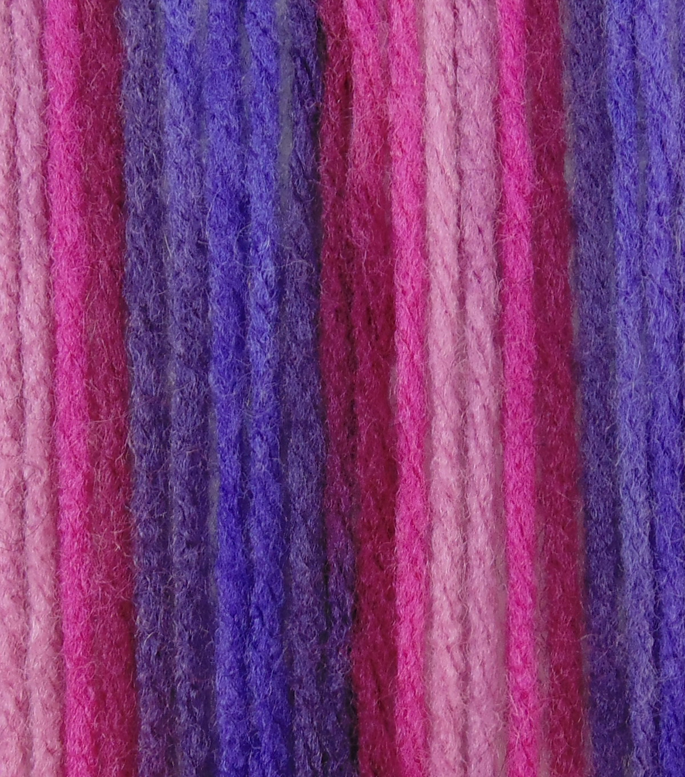 Big Twist Collection Value Worsted Yarn, Bumbleberry Variegated