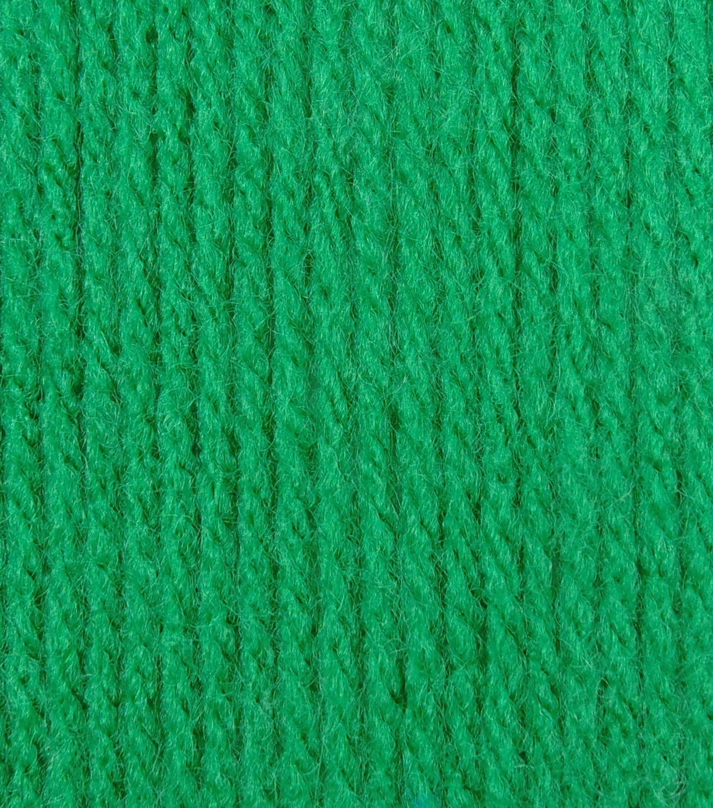 Big Twist Collection Value Worsted Yarn, Emerald
