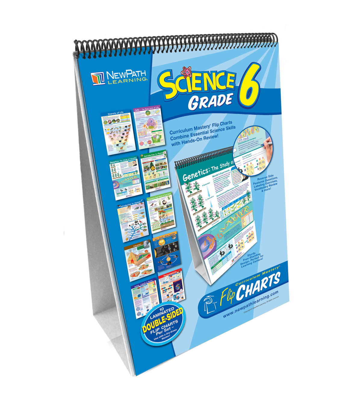 NewPath Learning Science Skills Curriculum Mastery Flip Chart Grade 6