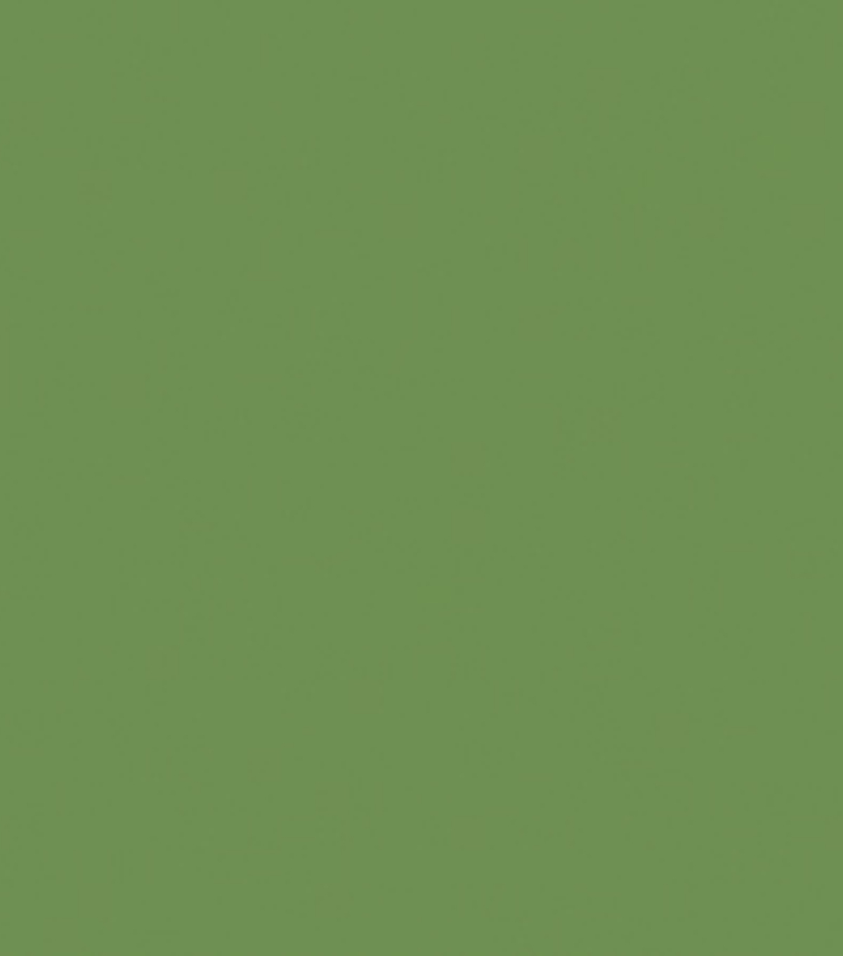 Delta Ceramcoat Acrylic Paint 2 oz, Light Foliage Green