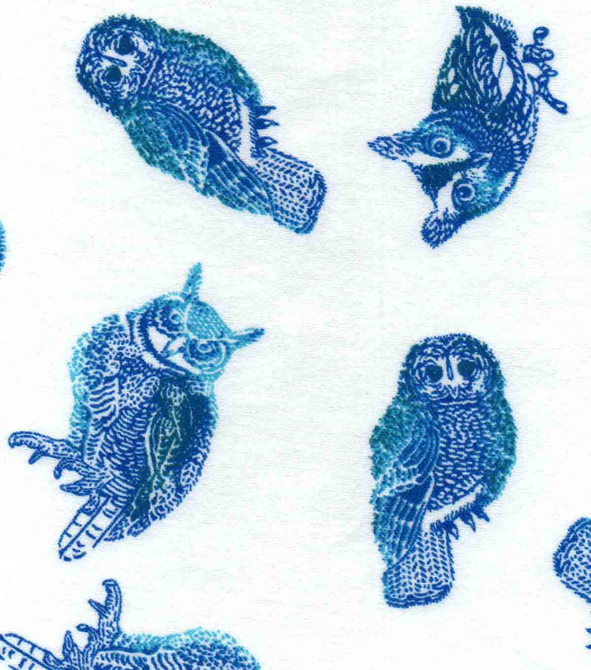 Snuggle Flannel Fabric -Realistic Sketched Owls Blue