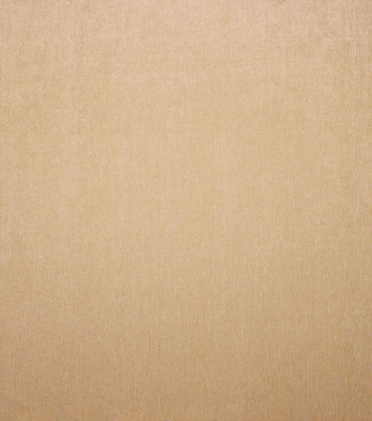 Barrow Upholstery Decor Fabric 56\u0022-Buck