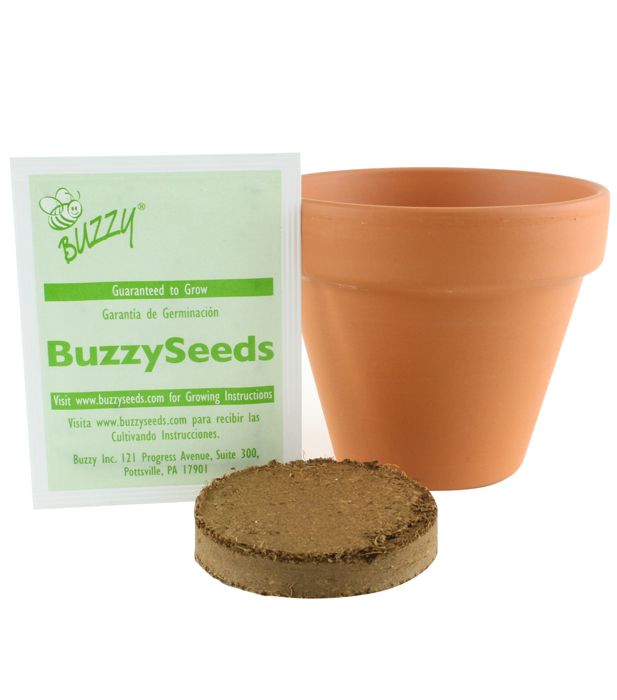 Buzzy Organic Basil Seeds DIY Growing Kit with Terracotta Pot