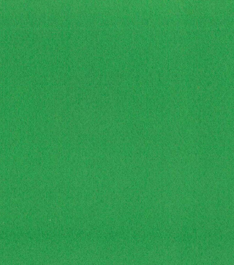 Blizzard Fleece Fabric -Solids, Greenbriar