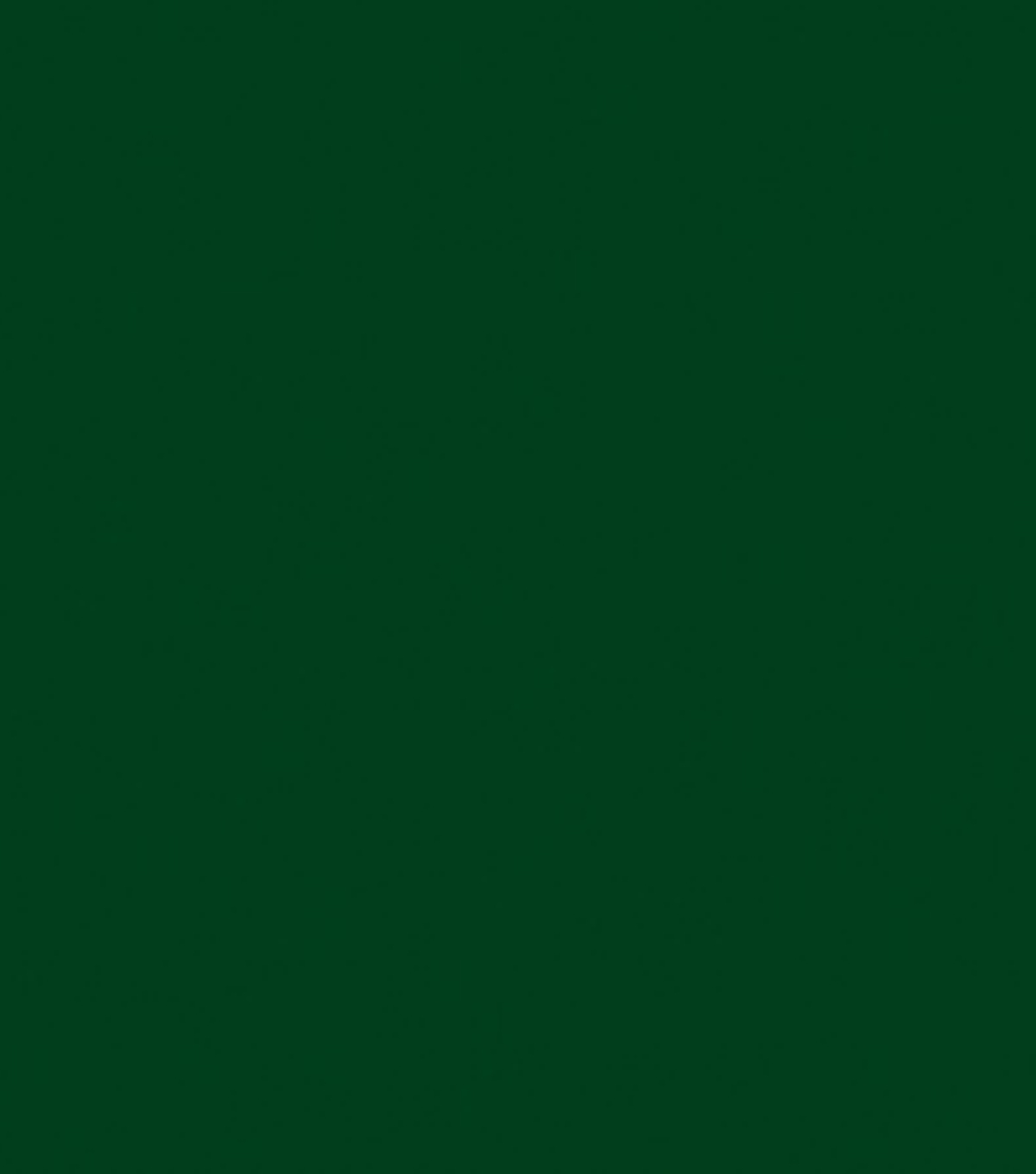 Delta Ceramcoat Acrylic Paint 2 oz, Dark Foliage Green