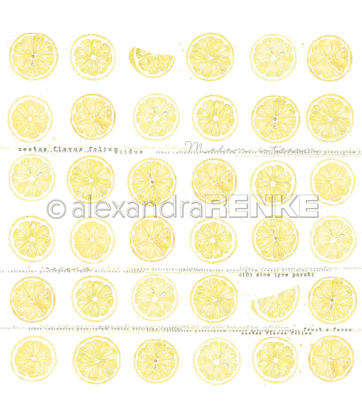 Alexandra Renke Cooking Paper 12\u0022X12\u0022-Lemon In Slices