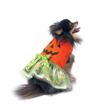 McCall\u0027s Pattern M7495 Pumpkin, Hero, Vampire & Dress Pet Costumes