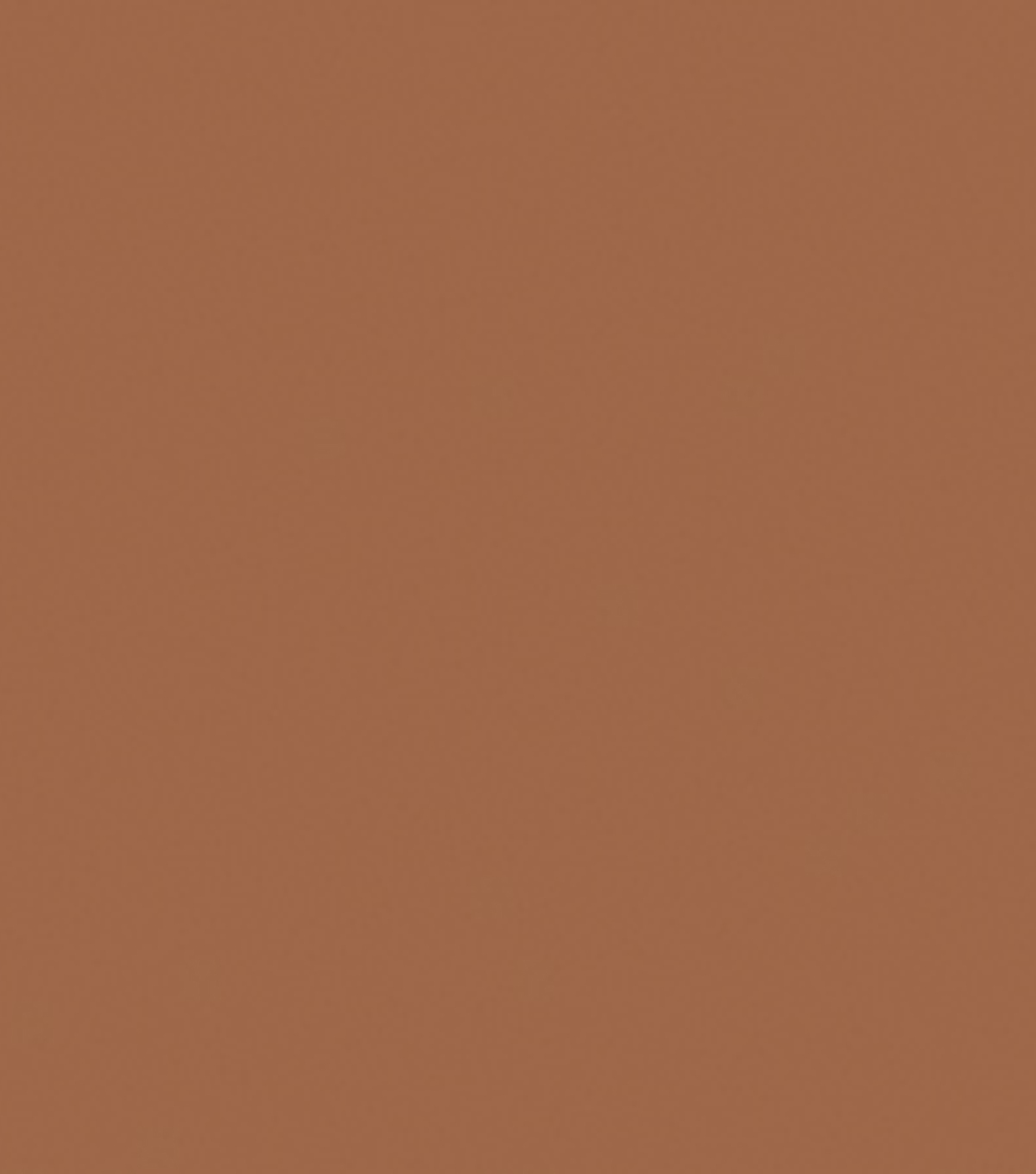 Delta Ceramcoat Acrylic Paint 2 oz, Autumn Brown