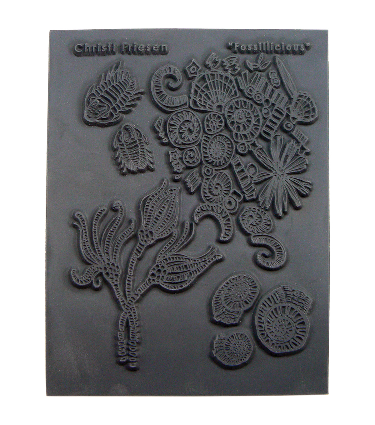 Great Create Christi Friesen Fossillicious Texture Stamp