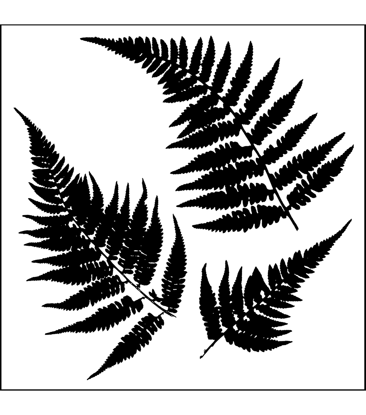 Crafter\u0027s Workshop Templates 6\u0022X6\u0022-Mini Ferns