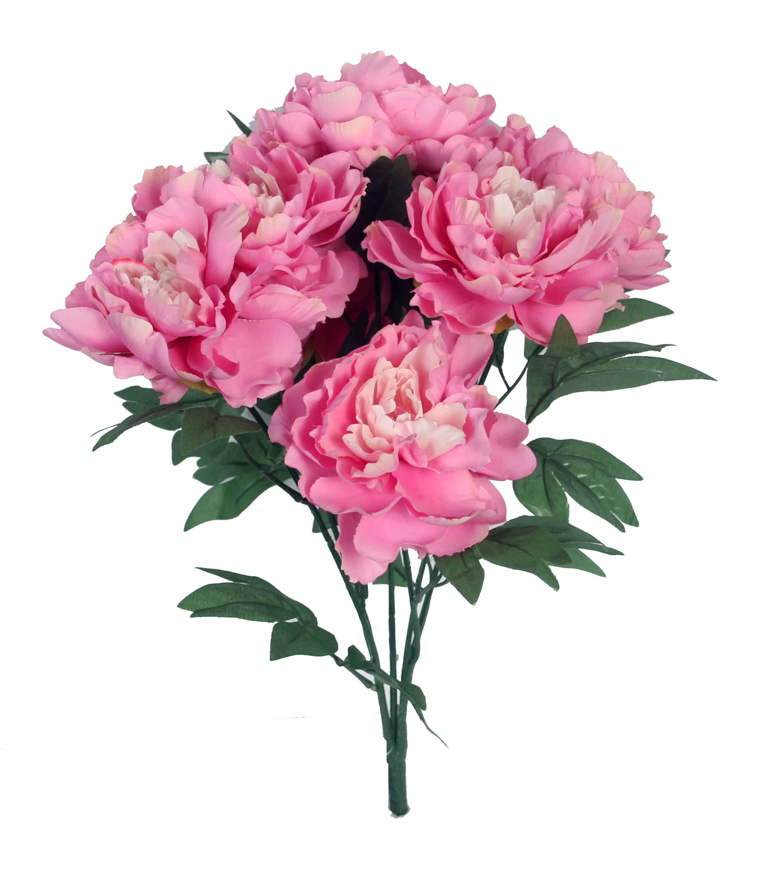 Bloom Room 20\u0027\u0027 Peony Bush-Pink