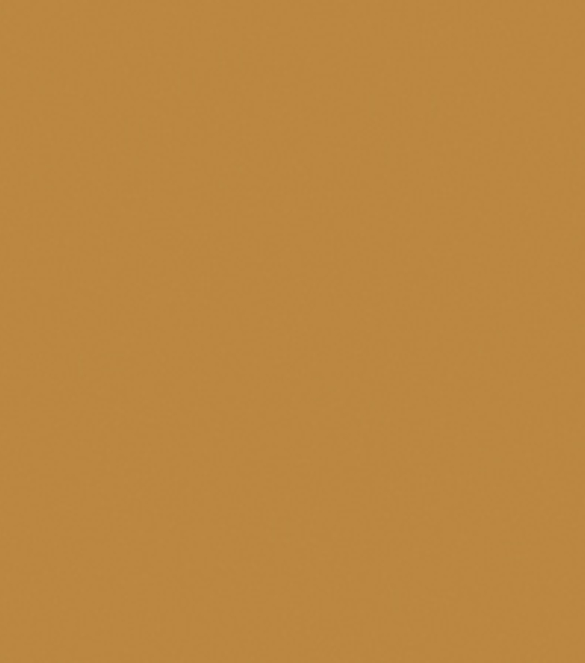 Delta Ceramcoat Acrylic Paint 2 oz, Golden Brown