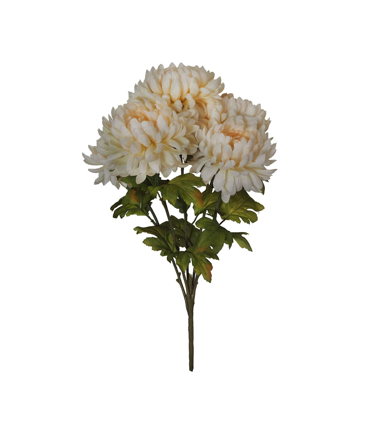 Blooming Autumn Water Resistant Mum Bush-Cream