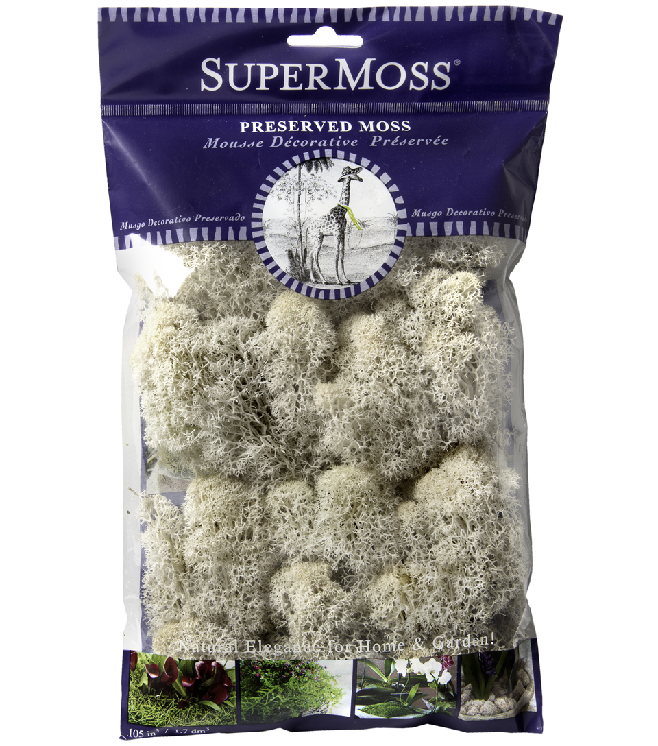 Reindeer Moss Preserved Natural 2Oz