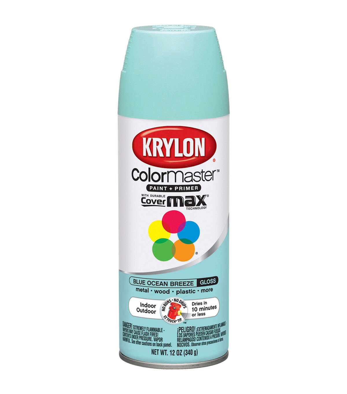 Krylon Indoor Outdoor Aerosol Paint-12oz