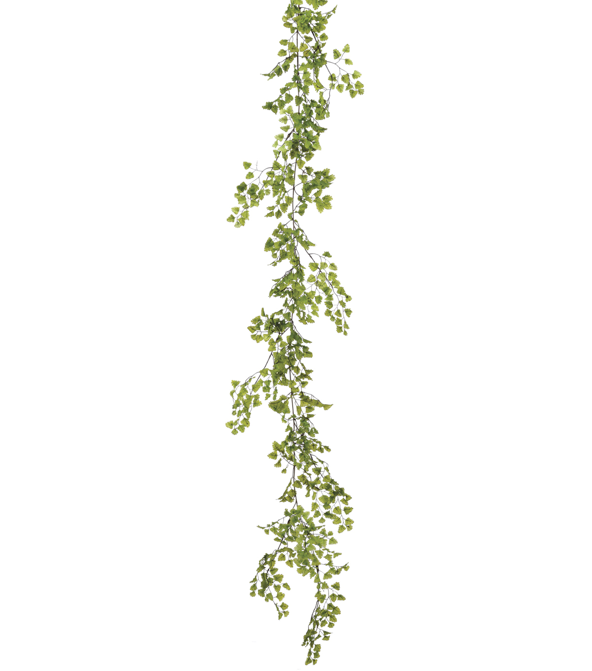 Bloom Room 6\u0027 Maidenhair Fern Garland