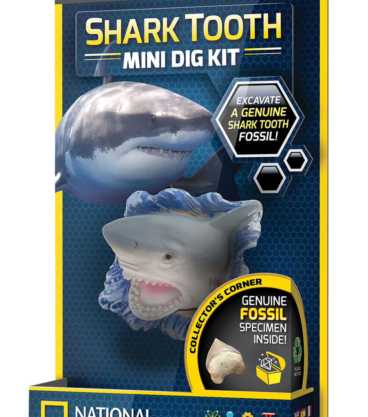 National Geographics Shark Tooth Minidig
