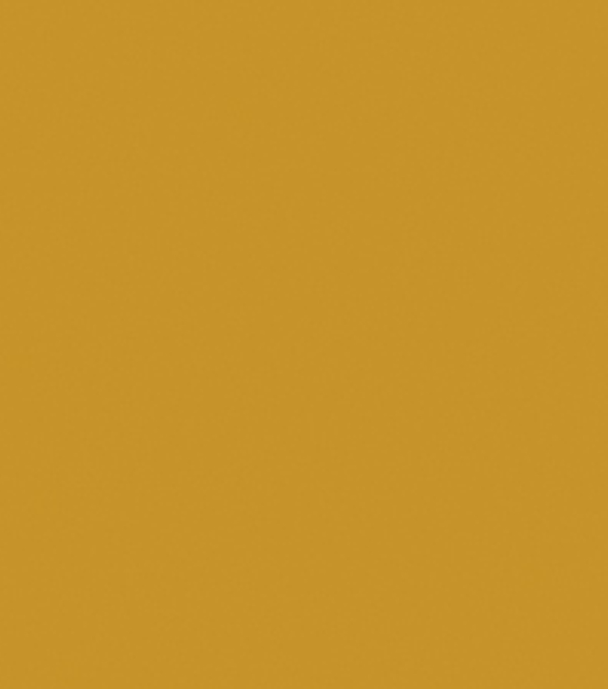 Delta Ceramcoat Acrylic Paint 2 oz, Raw Sienna