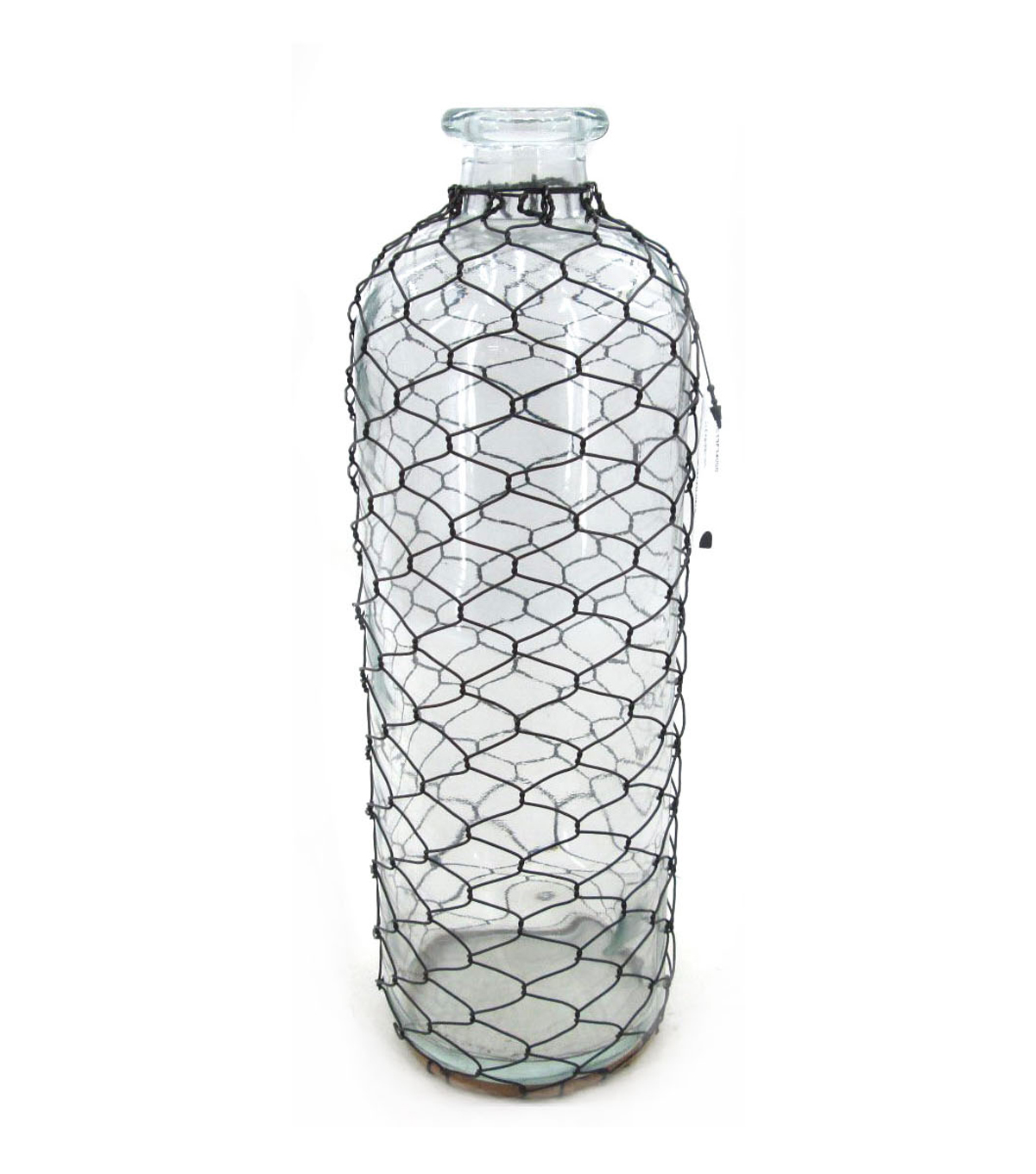 Bloom Room Glass Vase With Chicken Wire