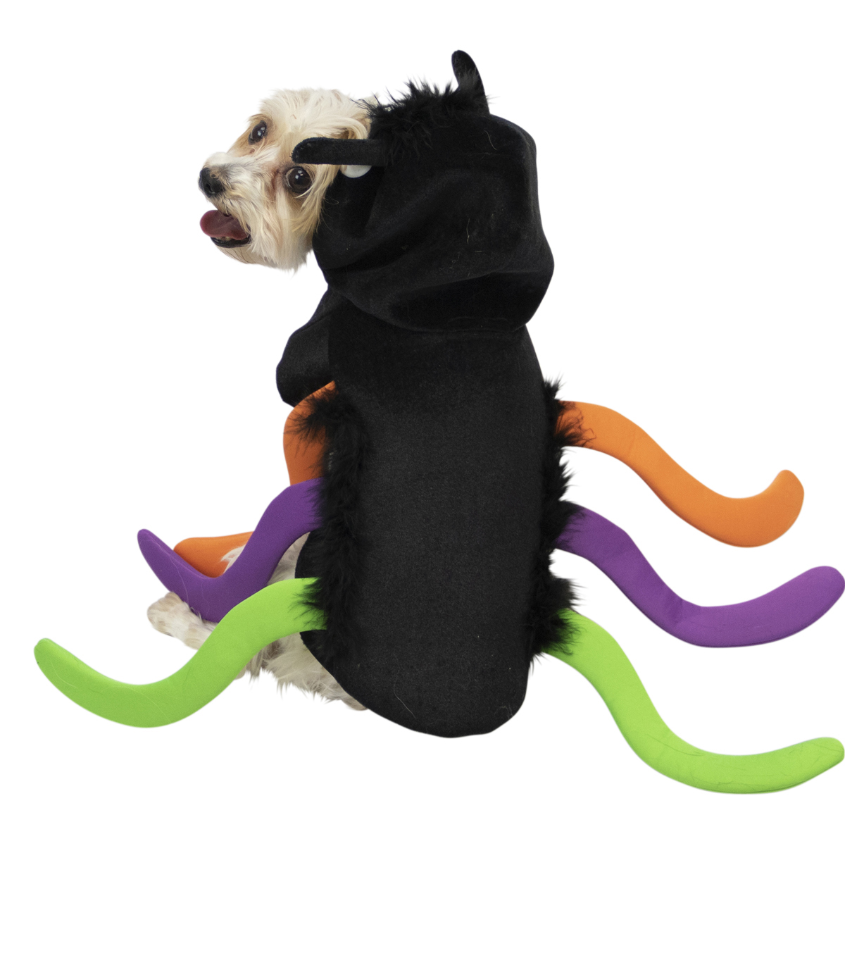 Maker\u0027s Halloween Pet Costume-Spider X-Large