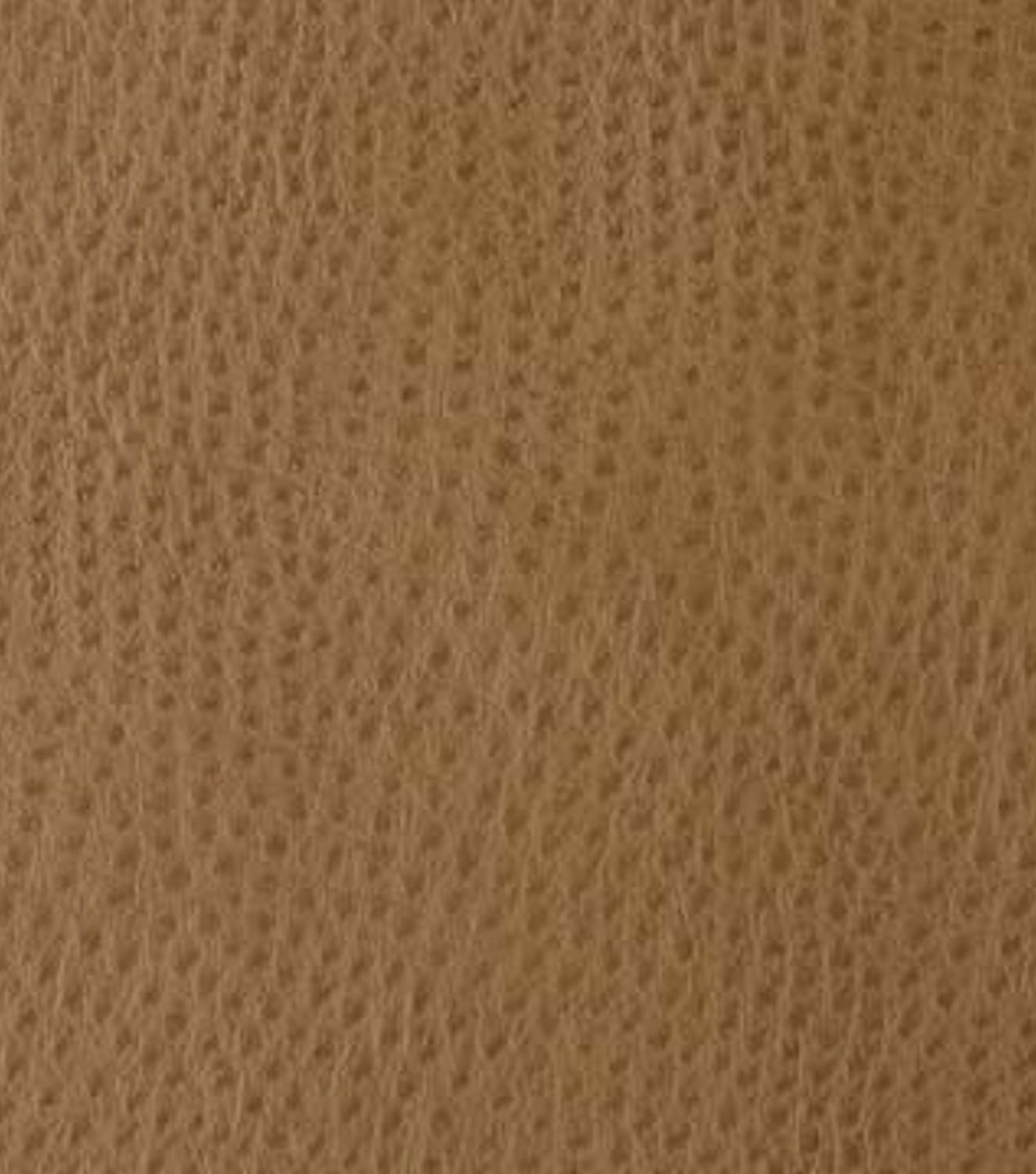 Home Decor 8\u0022x8\u0022 Fabric Swatch-Signature Series Outback Birch