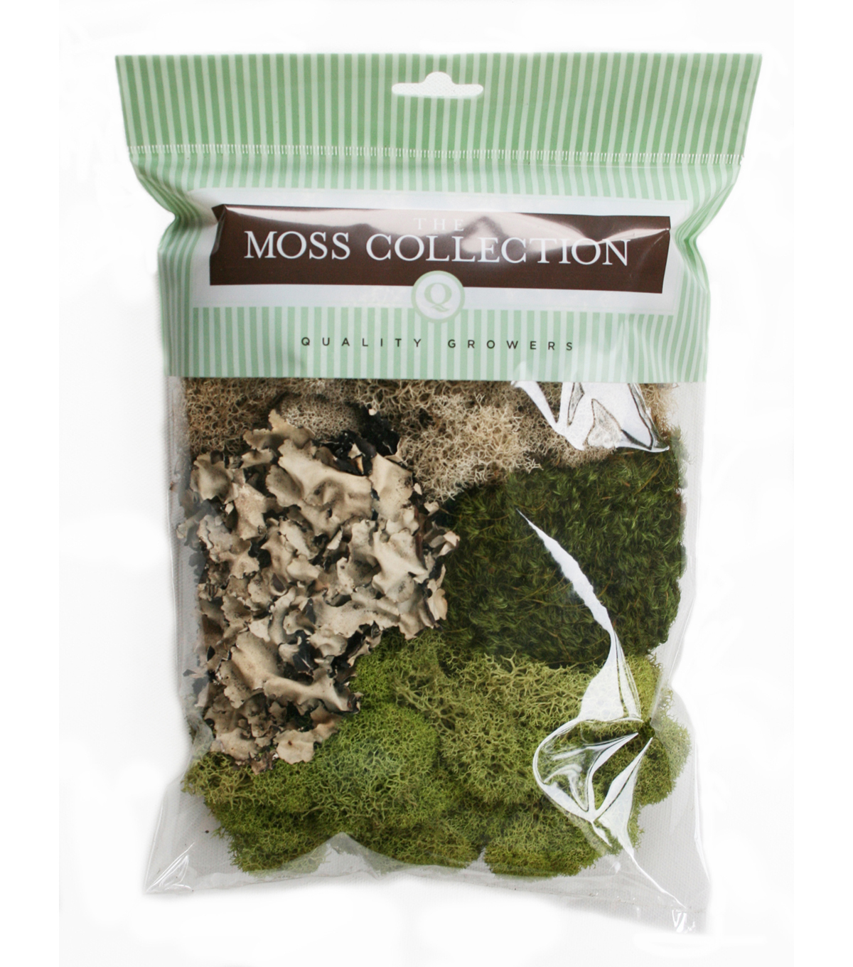 Variety Pack Moss