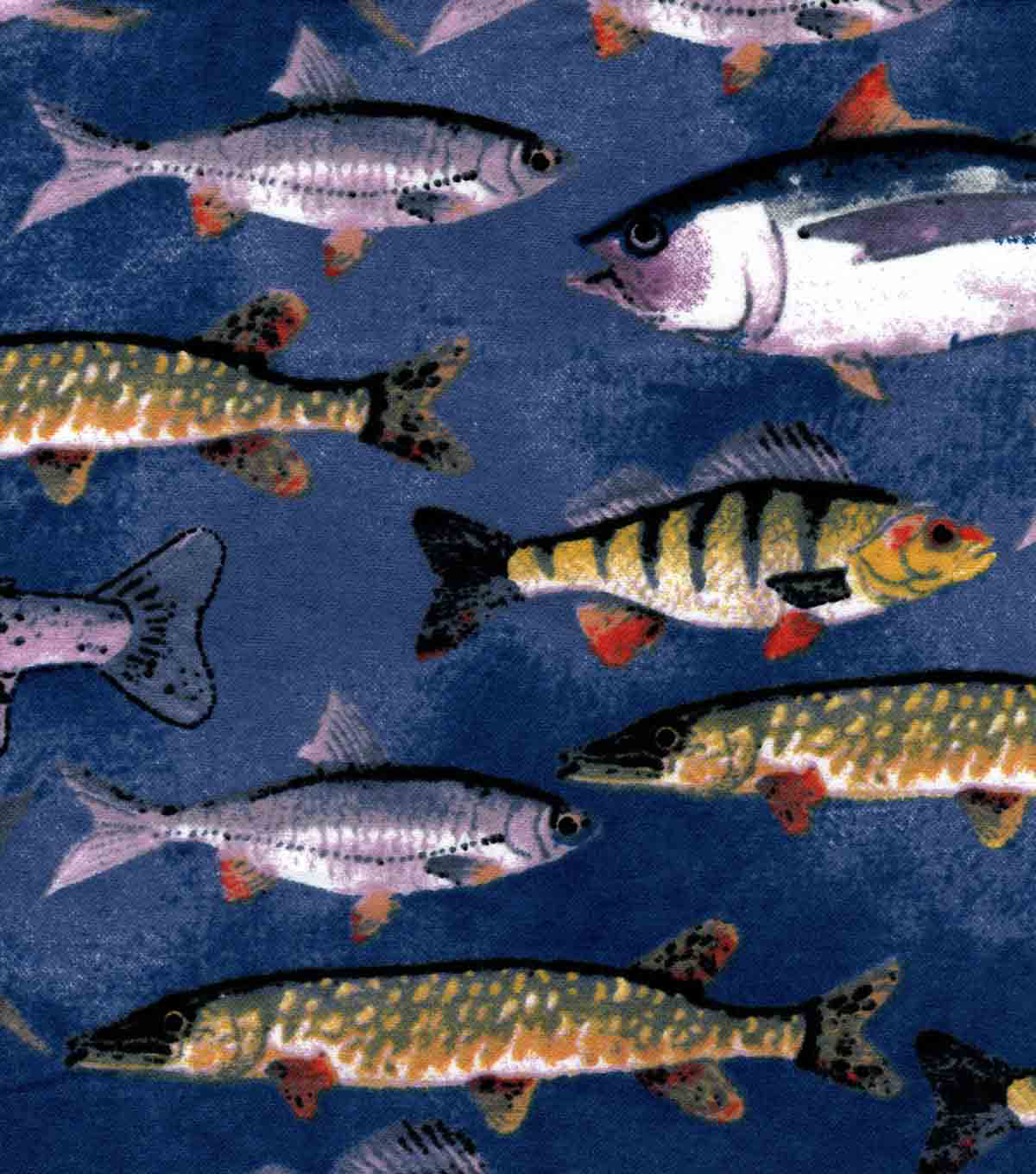 Snuggle Flannel Fabric-Fish On Blue