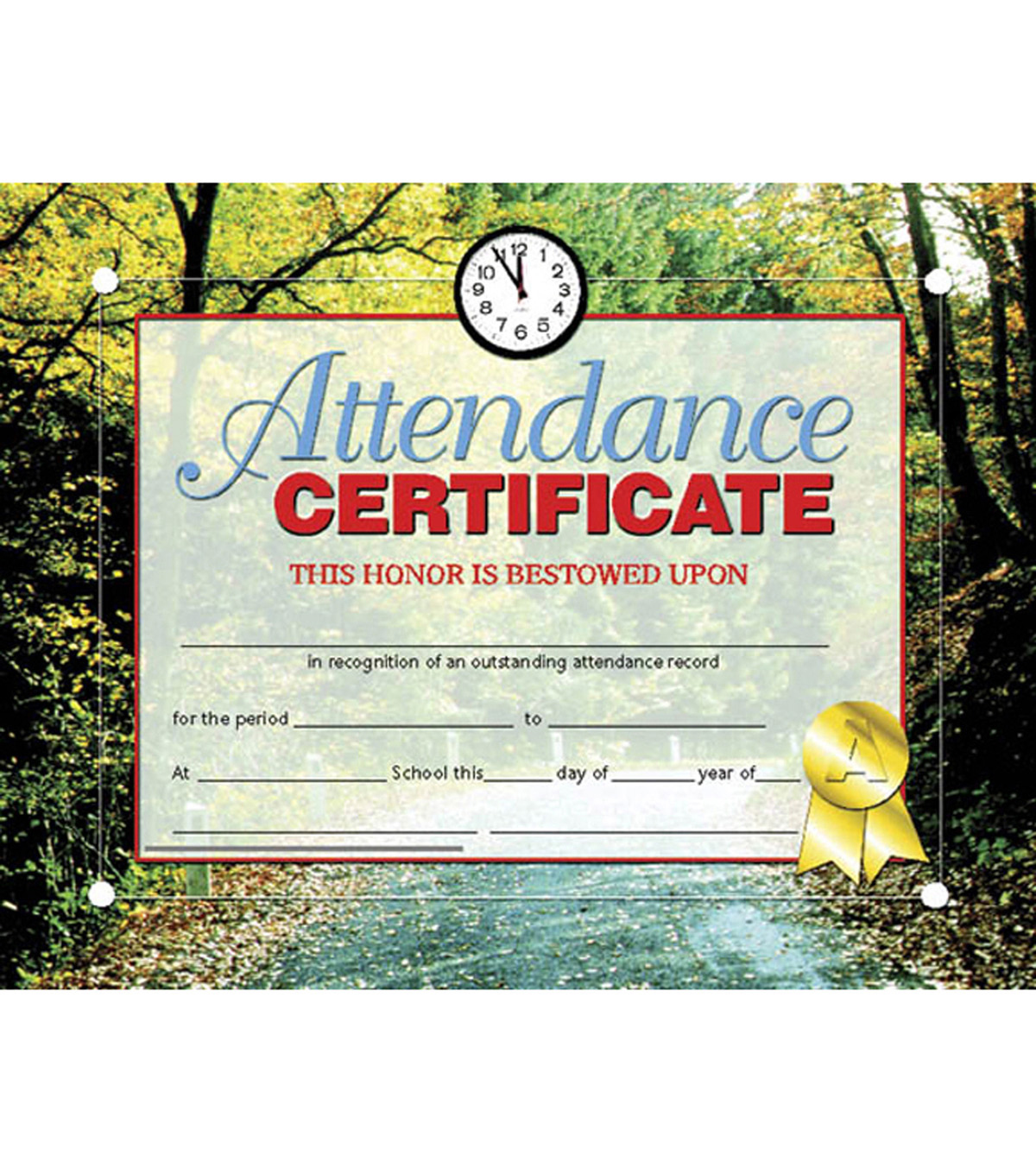 Hayes Attendance Certificate, 30 Per Pack, 6 Packs