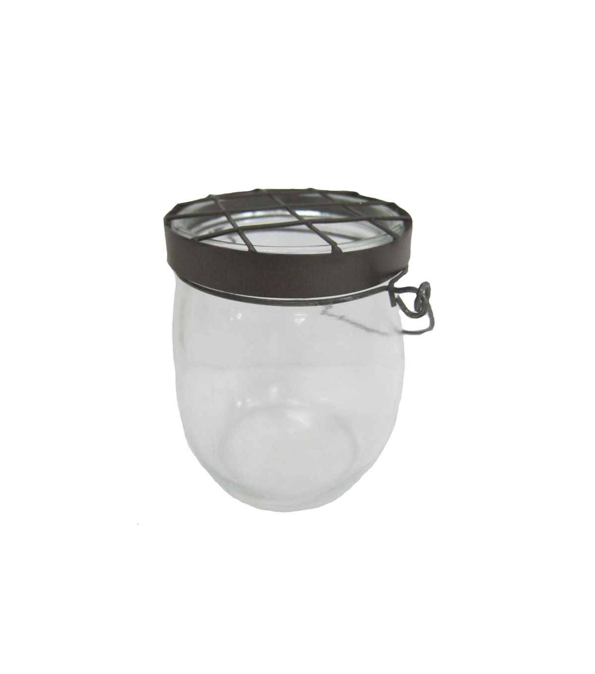Bloom Room Small Glass Container with Chicken Wire | JOANN