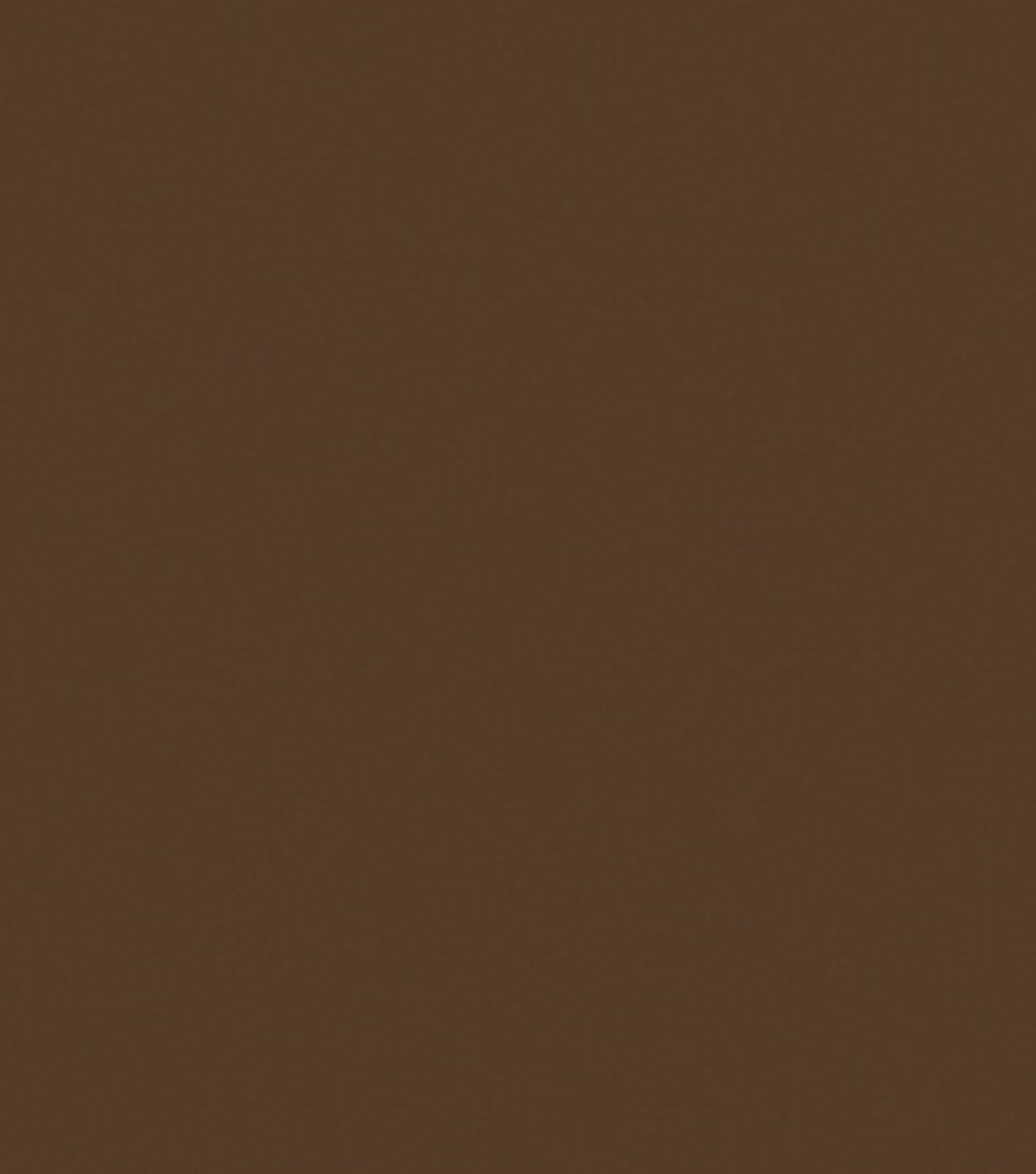 Delta Ceramcoat Acrylic Paint 2 oz, Burnt Umber