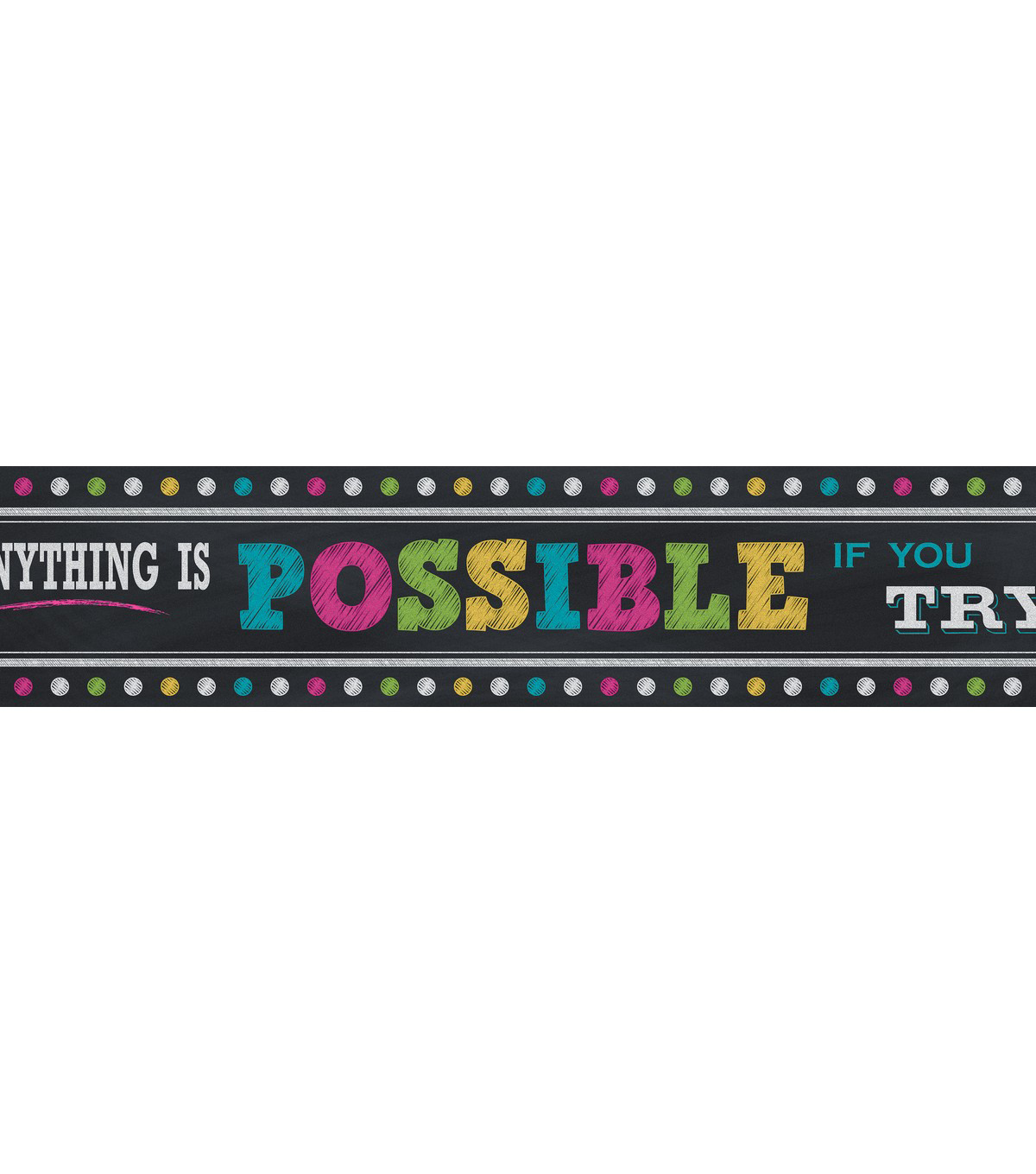 Teacher Created Resources Banner 8\u0022X39\u0022-Anything Is Possible