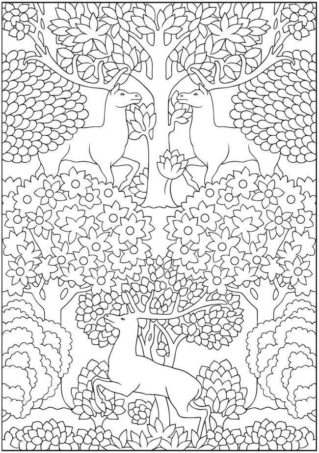 Dover Creative Haven Art Nouveau Animal Coloring Printables