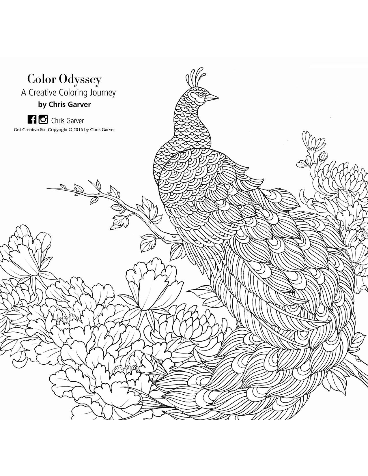 Color Odyssey: A Creative Coloring Journey Coloring Book Printables ...