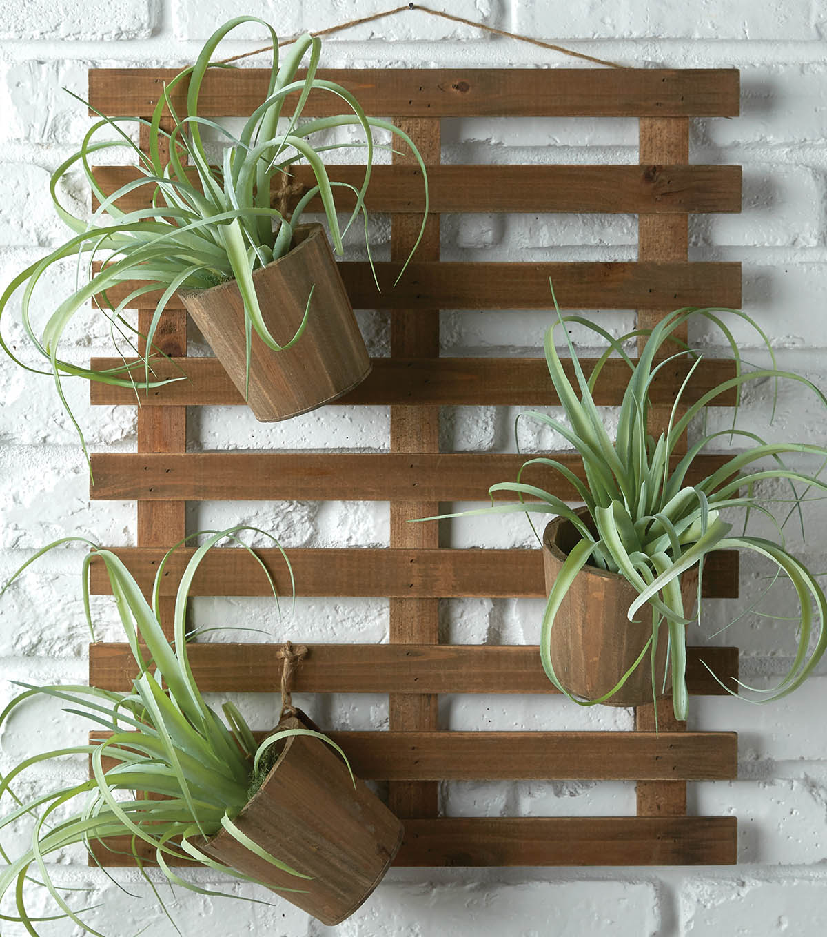 How To Make Hanging Pots With Air Plants