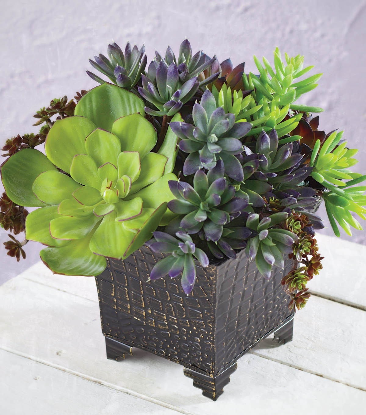 Metal Container with Succulents