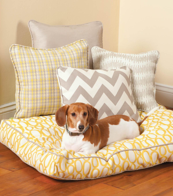 Box Cushion Dog Bed